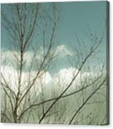 Cloudy Blue Sky Through Tree Top No 1 Canvas Print