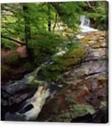 Cloughleagh Wood, Kilbride, Ireland Canvas Print