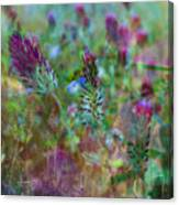 Clover Field Impressions Canvas Print
