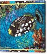 Clown Triggerfish-bordered Canvas Print