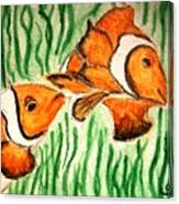 Clowning Fish Canvas Print