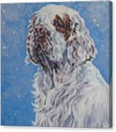 Clumber Spaniel In Snow Canvas Print