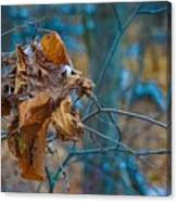 Clump Of Fall - Early Winter Canvas Print