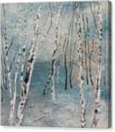Cluster Of Birches Canvas Print