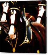 Clydesdales Canvas Print