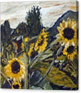 Cmelak Canvas Print