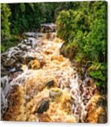Coal Creek Rapids Canvas Print