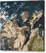 Coastal Crevices Canvas Print