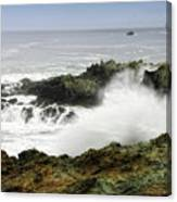 Coastal Expressions Canvas Print
