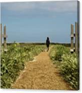 Coastal Path Canvas Print