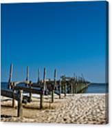 Coastal Remains Canvas Print