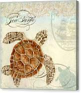 Coastal Waterways - Green Sea Turtle 2 Canvas Print