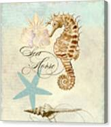 Coastal Waterways - Seahorse Rectangle 2 Canvas Print