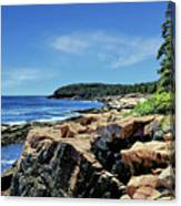 Coastline And Otter Cliff 1 Canvas Print