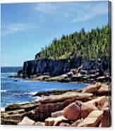 Coastline And Otter Cliff 3 Canvas Print