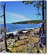 Coastline At Otter Point 1 Canvas Print