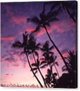 Coastline Palms Canvas Print