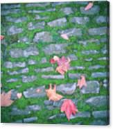 Cobblestone Path Canvas Print