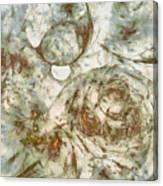Cobblestoned Disrobed  Id 16098-000717-06400 Canvas Print