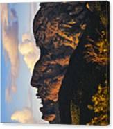 Cochise Head Canvas Print