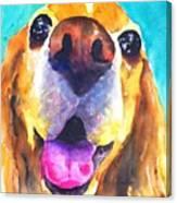 Cocker Spaniel Dog Smile Canvas Print