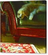 Cocker Spaniel Dog ... Montana Art Photo Canvas Print