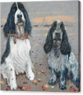 Cocker Spaniels Canvas Print