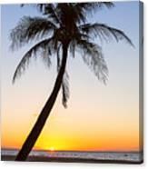 Coco Mo Tropical Sunrise Canvas Print