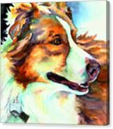 Cocoa Lassie Collie Dog Canvas Print
