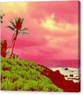 Coconut Palm Makai For Pele Canvas Print