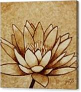 Coffee Painting Water Lilly Blooming Canvas Print