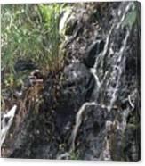 Coki Waterfall Canvas Print