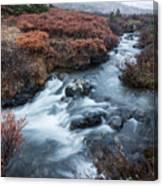 Cold Creek In Autumn Canvas Print