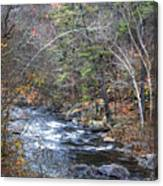 Cold Mountain Stream Canvas Print