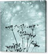 Cold Winter Canvas Print