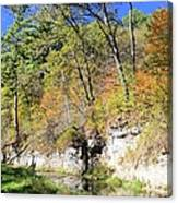 Coldwater Trout Stream Canvas Print