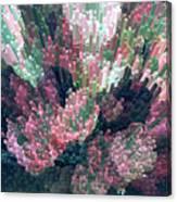 Coleus Extrusion Canvas Print