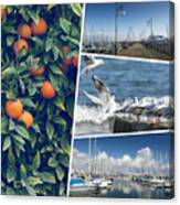 Collage Of Cyprus Images Canvas Print