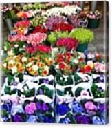 Cologne Flowers Canvas Print