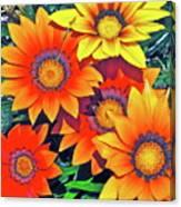 Color 53 Canvas Print