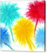 Color Burst 1 Canvas Print