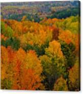 Color Burst Vertical Canvas Print