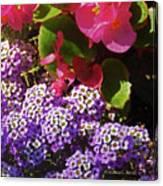 Color Combination Flowers Cc63 Canvas Print