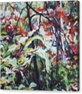 Color Gone Wild Canvas Print