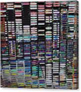 Color Grid - Gold Line Canvas Print