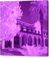 Color Infrared Canvas Print