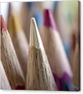 Color Pencils Close-up Canvas Print