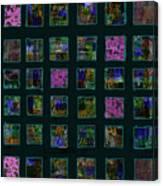Color Square 2 Canvas Print