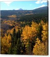Colorado Autumn - 2 Canvas Print