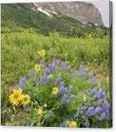 Colorado Color #4 Canvas Print